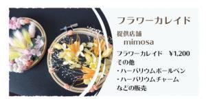 mimosaさん
